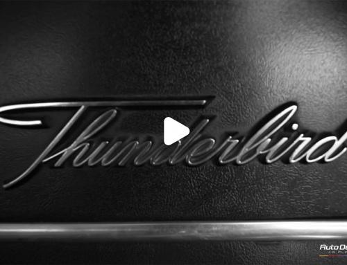 ThunderBird – Tratamiento Cerámico.
